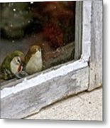 Birds In A Window Metal Print