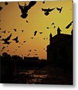 Birds In Flight At Gateway Of India Metal Print by Photograph by Jayati Saha