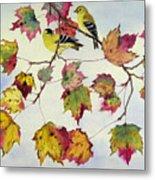 Birds On Maple Tree 10 Metal Print