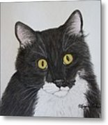 Black And White Cat Metal Print by Megan Cohen
