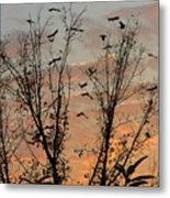 Black Birds At Sundown Metal Print