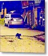 Black Cat Crosses Path Metal Print