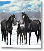 Black Horses In Winter Pasture Metal Print