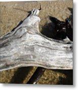 Bleached Driftwood Metal Print