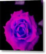 Bloom N Love Metal Print