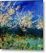 Blooming Appletrees 56 Metal Print