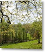 Blooming Landscape Metal Print