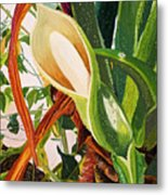 Blooming Philodendron Tree After Rain Metal Print