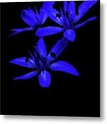 Blue Bells Metal Print