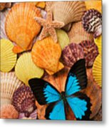 Blue Butterfly And Sea Shells Metal Print