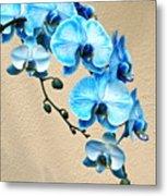 Blue Mystique Orchid Metal Print