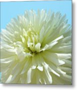 Blue Sky Art White Dahlia Flower Floral Prints Baslee Troutman Metal Print