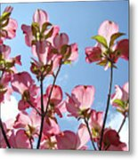 Blue Sky Landscape White Clouds Art Prints Pink Dogwood Flowers Baslee Troutman Metal Print