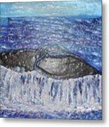 Blue Whale 1 Metal Print