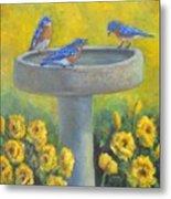 Bluebirds On Birdbath Metal Print