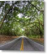 Bohicket Road Johns Island South Carolina Metal Print