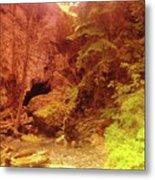 Boulder Cave  Metal Print
