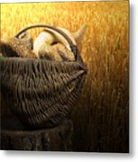 Breads And Wheat Cereal Crops Metal Print