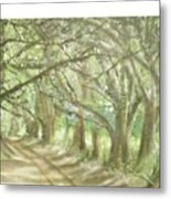 Bridge Of Oaks Metal Print