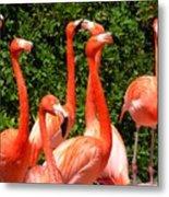 Bright Flamingos Metal Print