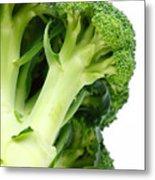 Broccoli Metal Print by Gaspar Avila