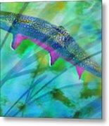 Brook Trout In The Stream Metal Print by Terril Heilman