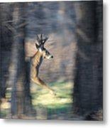 Buck Running Thru The Woods Metal Print