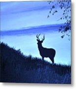 Buck Silhouette In Blue Metal Print