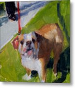 Buddy On A Red Leash Metal Print
