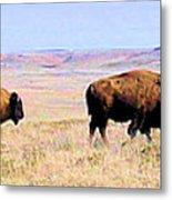 Buffalo Range In Kansas Metal Print