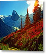 Bugaboos Evening Buzz Metal Print