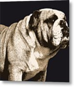 Bulldog Spirit Metal Print