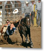 Bulldogging At The Rodeo Metal Print