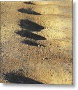 Bumps In The Road Metal Print