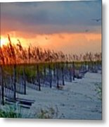Burning Grasses And The Fence Metal Print