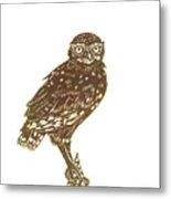 Burrowing Owl On Mullein Metal Print
