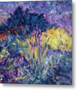 Burst Of Color-last Night In Monets Gardens Metal Print