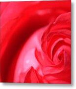 Butler Rose Metal Print