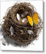 Butterfly And Nest Metal Print by Tony Cordoza