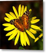 Butterfly Bloom Metal Print