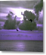 Butterfly Dreams And A Purple Sky Metal Print