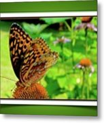 Butterfly For Earth Day Metal Print