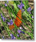 Butterfly In Blue Metal Print