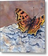 Butterfly-in-the-old-growth-forest Metal Print