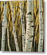 Buttery Birches Metal Print