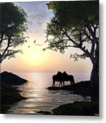 By Sunset Light Metal Print