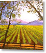 California Napa Valley Vineyard Metal Print