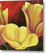 California Poppies Iv Metal Print