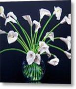 Calla Lilies Metal Print