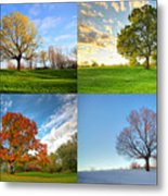 Canadian Seasons Metal Print